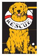 Delaware Valley Golden Retriever Rescue