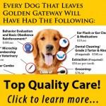 DVGRR Every Dog Gets