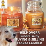 DVGRR Yankee Candle