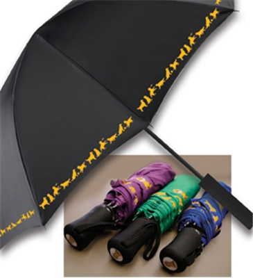 exclusive dvgrr umbrella delaware valley golden