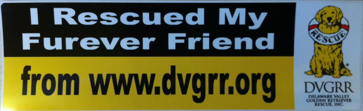 bumper sticker delaware valley golden retriever rescue