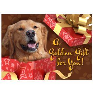 40106 DVGRR Gift Membership Front