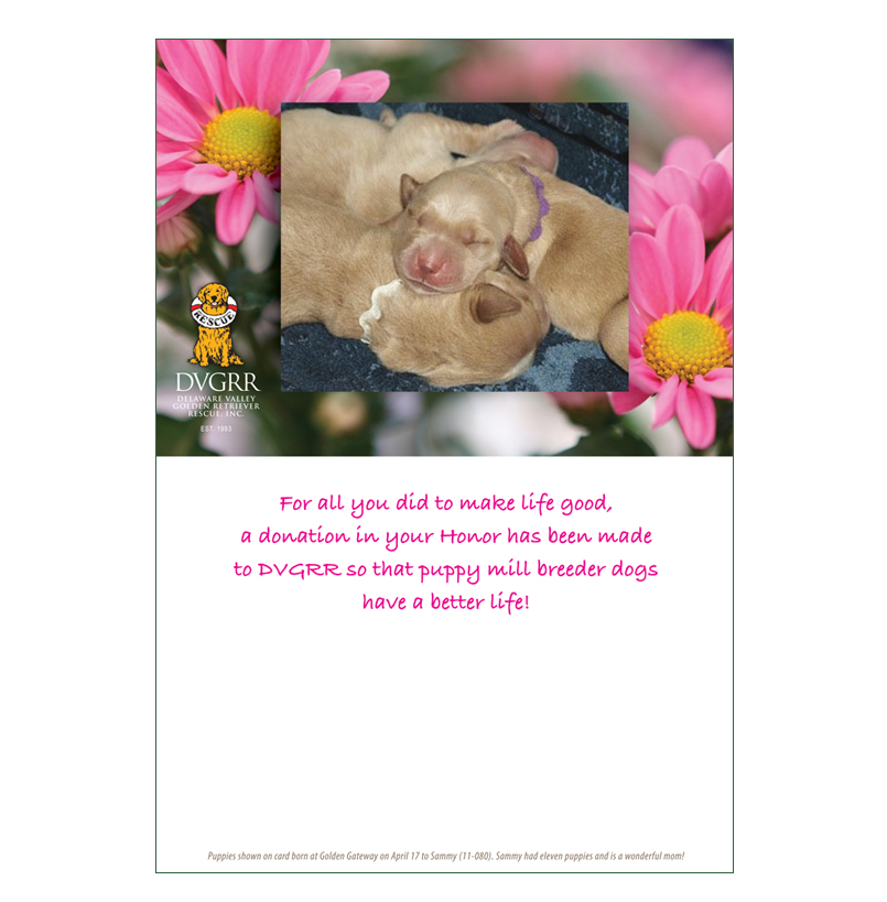 Donation greeting card mothers day the amount of your donation is donation greeting card mothers day m4hsunfo