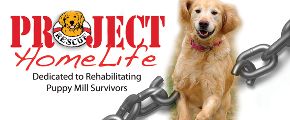 Project Home Life - Delaware Valley Golden Retriever Rescue