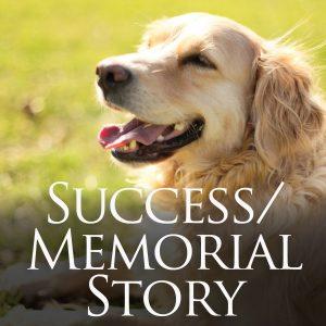 401-08A Success_Memorial Story