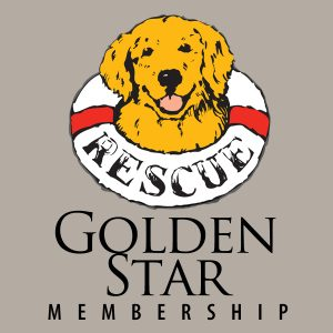 40104 GOLDEN Star Membership