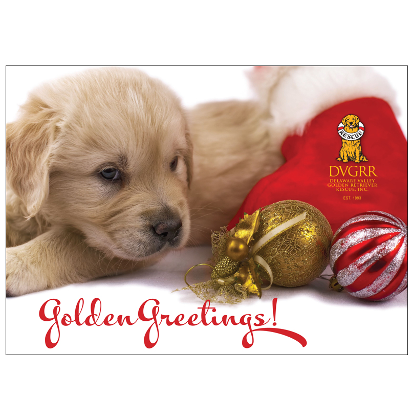 Donation greeting cardgolden greetings puppy holiday card the donation greeting cardgolden greetings puppy holiday m4hsunfo
