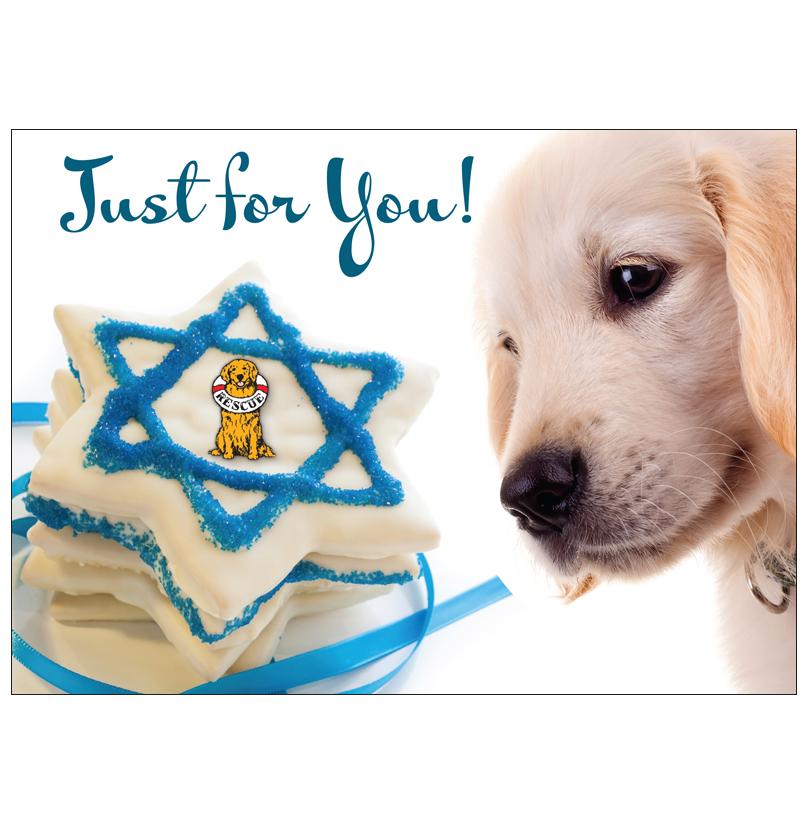 Donation greeting cardjust for you hanukkah the amount of your donation greeting cardjust for you m4hsunfo