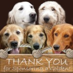 40109 Thank You For Sponsoring a Golden