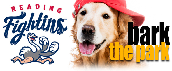 reading fightin phils bark in the park night delaware