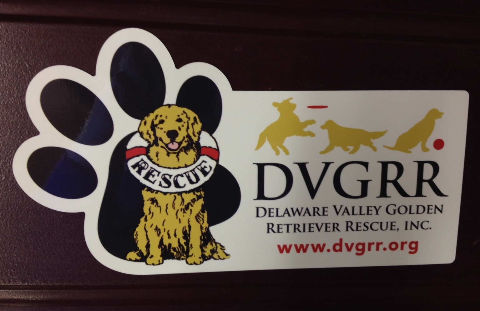 magnet dvgrr delaware valley golden retriever rescue