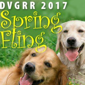 SpringFlingSmall