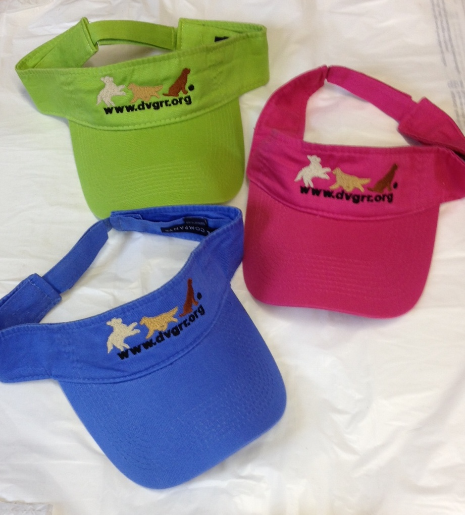 visor frolicking logo delaware valley golden retriever