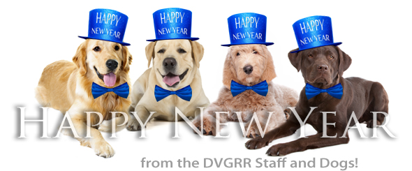 Happy New Year From The Board Staff At Dvgrr Delaware Valley
