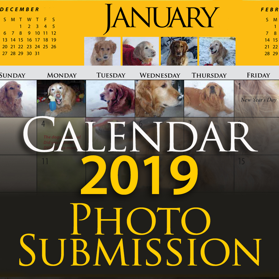 calendar submission 2019