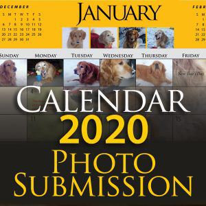 Tax Calendar 2020 Calendar Submission 2020 (Calendar submissions are not tax