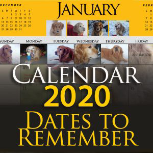 Tax Calendar 2020 Calendar 2020 Dates to Remember (This donation is non tax