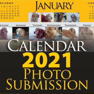 Calendar Submission 2021 (Calendar submissions are not tax
