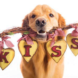 DVGRR Kiss Me Card FAHR-front