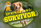 DVGRR Spring Fling SM