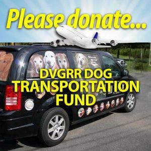 DVGRR Transportation4