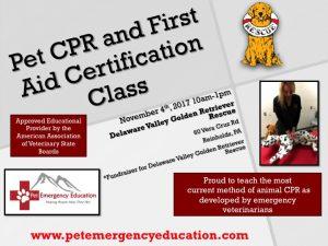 Training Pet First Aid Delaware Valley Golden Retriever
