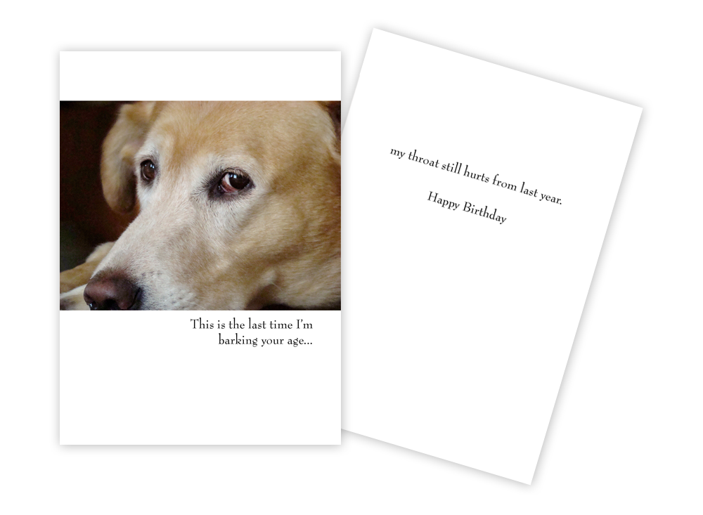 Happy Birthday Card Glaring Dog Delaware Valley Golden Retriever