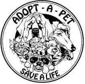 a day of hope for puppy mill dogs delaware valley golden
