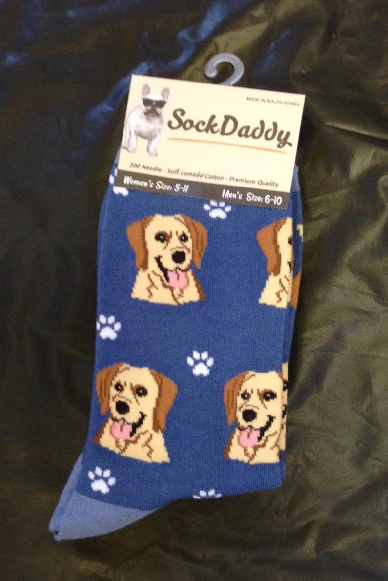 Sock Daddy Labrador Retriever Delaware Valley Golden Retriever Rescue